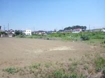 kimagase4799_genchi